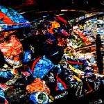 WRC Backstories: Nicolas Gilsoul