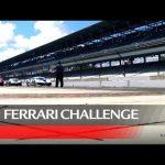 Ferrari Challenge North America – Indianapolis 2020, Coppa Shell Race 2