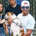 POO-CH PATROL Lewis Hamilton's bulldog Roscoe POOED on Mercedes team-mate Valtteri Bottas' motorhome at Silverstone, reveals Finn