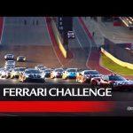 Ferrari Challenge North America – COTA 2020, Coppa Shell Race 1